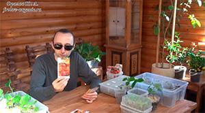 Выращивание сортов томатов лекция Фролова