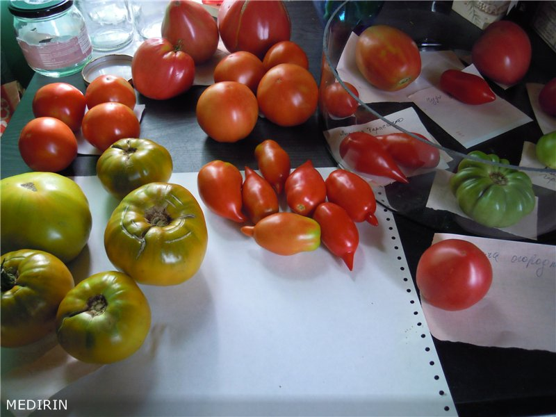 малахитовая-шкатулка-томат2